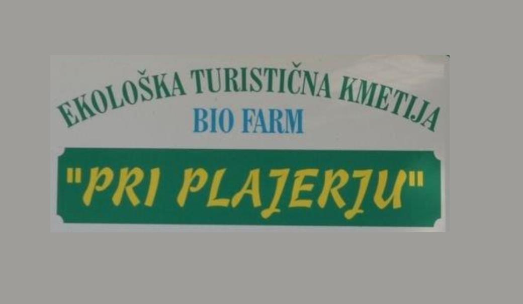Ekološka turistična kmetija pri Plajerju